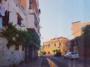"""في طرابلس الميناء… خط رفيع يفصل أغنياء المدينة في قصورهم وفقرائها في """"أكواخهم"""" (الصورة: ليان مسلم)"""